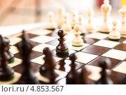 Купить «Шахматные фигуры на доске», фото № 4853567, снято 6 сентября 2012 г. (c) Клинц Алексей / Фотобанк Лори