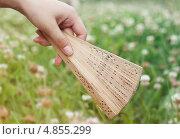 Веер в руке. Стоковое фото, фотограф Анастасия Кунденкова / Фотобанк Лори