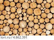 Купить «Сосновые бревна, фон», фото № 4862391, снято 8 июля 2013 г. (c) Дмитрий Калиновский / Фотобанк Лори