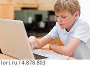 Прекрасный мальчик пользуется ноутбуком. Стоковое фото, агентство Wavebreak Media / Фотобанк Лори