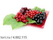 Купить «Различные ягоды с зелеными листьям на красной тарелке», фото № 4882115, снято 13 июля 2013 г. (c) Елена Силкова / Фотобанк Лори