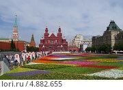 Купить «Цветочный ковёр на Красной площади», фото № 4882655, снято 19 июля 2013 г. (c) Павел Москаленко / Фотобанк Лори