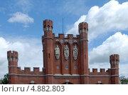 Купить «Знаковые скульптуры на Королевских воротах города. Калининград- Кёнигсберг.», эксклюзивное фото № 4882803, снято 22 июля 2013 г. (c) Svet / Фотобанк Лори