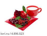 Купить «Ягоды смородины, вишни, розы и кружка молока», фото № 4896023, снято 13 июля 2013 г. (c) Елена Силкова / Фотобанк Лори