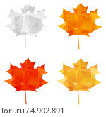 Купить «Осенние листья канадского клена на белом фоне», иллюстрация № 4902891 (c) Евгения Малахова / Фотобанк Лори