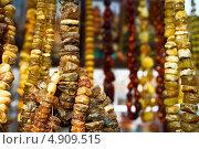 Янтарь. Стоковое фото, фотограф Anna VazhoVa / Фотобанк Лори