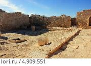 Древние руины города Авдат в Израиле (2012 год). Редакционное фото, фотограф Светлана Першенкова / Фотобанк Лори