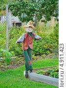 Купить «Пугало в огороде», эксклюзивное фото № 4911423, снято 24 августа 2012 г. (c) Алёшина Оксана / Фотобанк Лори
