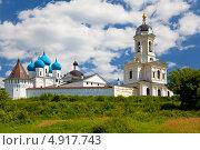 Купить «Высоцкий монастырь в Серпухове», фото № 4917743, снято 8 июля 2012 г. (c) Наталья Волкова / Фотобанк Лори