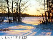 Купить «Зимний закат», фото № 4918223, снято 1 апреля 2012 г. (c) ElenArt / Фотобанк Лори