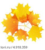 Купить «Осенние листья на белом фоне», иллюстрация № 4918359 (c) Евгения Малахова / Фотобанк Лори