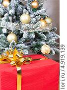 Купить «Новогодний подарок под елкой», фото № 4919139, снято 10 декабря 2011 г. (c) Юлия Гапеенко / Фотобанк Лори