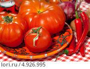 Купить «Спелые помидоры и острый перец», фото № 4926995, снято 21 июня 2013 г. (c) ElenArt / Фотобанк Лори