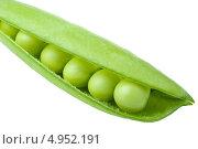 Зеленый горох в стручке, белый фон. Стоковое фото, фотограф Петеляева Татьяна / Фотобанк Лори