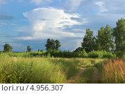 Купить «Приближение грозы», фото № 4956307, снято 27 июля 2013 г. (c) Александр Романов / Фотобанк Лори