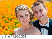Купить «Портрет жениха и невесты на фоне жёлтых цветов», эксклюзивное фото № 4960351, снято 15 июня 2013 г. (c) Игорь Низов / Фотобанк Лори
