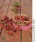Купить «Плоды шиповника в корзинке», эксклюзивное фото № 4961923, снято 15 августа 2013 г. (c) Наталья Осипова / Фотобанк Лори