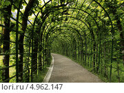 Купить «Оранжерея в парке», фото № 4962147, снято 13 июня 2012 г. (c) Федюнин Александр / Фотобанк Лори
