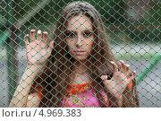 Портрет молодой девушки смотрящей сквозь сетку рабицу. Стоковое фото, фотограф Игорь Долгов / Фотобанк Лори