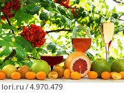 Три бокала вина и  фрукты в саду. Стоковое фото, фотограф Смирнов Константин / Фотобанк Лори