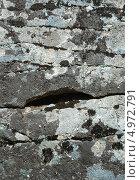 Купить «Камни, покрытые лишайником», фото № 4972791, снято 11 сентября 2004 г. (c) Георгий Хрущев / Фотобанк Лори