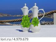 Два кувшина с оливковым маслом и вином на столе, на фоне Средиземного моря. Стоковое фото, фотограф O.Guerro / Фотобанк Лори