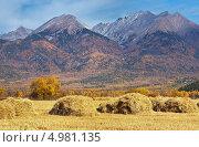 Купить «Солнечная осень в Тункинской долине», фото № 4981135, снято 3 октября 2010 г. (c) Виктория Катьянова / Фотобанк Лори