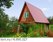 Купить «Деревянный домик на дачном участке. Нижегородская область», фото № 4990327, снято 25 августа 2013 г. (c) Элина Гаревская / Фотобанк Лори
