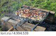 Купить «Приготовление мяса на решетке на углях», видеоролик № 4994539, снято 28 февраля 2020 г. (c) FotograFF / Фотобанк Лори