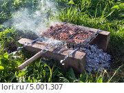 Купить «Приготовление мяса на решетке на углях», фото № 5001307, снято 28 февраля 2020 г. (c) FotograFF / Фотобанк Лори