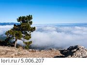 Купить «Гора Ай Петри. Крым», фото № 5006207, снято 15 ноября 2012 г. (c) Типляшина Евгения / Фотобанк Лори