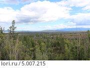 Пейзаж. Лес и плоскогорье. Тайга. Стоковое фото, фотограф Андрей Голяк / Фотобанк Лори