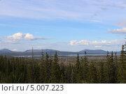 Лес, природа. Стоковое фото, фотограф Андрей Голяк / Фотобанк Лори