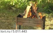 Купить «Дрова горят в мангале», видеоролик № 5011443, снято 2 сентября 2013 г. (c) Андрей Некрасов / Фотобанк Лори
