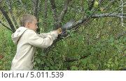 Купить «Мальчик пилит ветку яблони», видеоролик № 5011539, снято 2 сентября 2013 г. (c) Андрей Некрасов / Фотобанк Лори