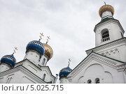 Купить «Купола Свято-Николаевского кафедрального собора. Бобруйск.», фото № 5025715, снято 30 августа 2013 г. (c) Victoria Demidova / Фотобанк Лори