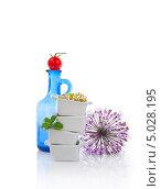 Натюрморт с пророщенными семенами на белом фоне. Стоковое фото, фотограф Svetlana Mihailova / Фотобанк Лори