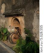 Велосипед в арке (2013 год). Стоковое фото, фотограф Надежда Зверева / Фотобанк Лори