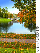 Мост через пруд в осеннем парке, фото № 5030199, снято 22 сентября 2012 г. (c) Куликов Константин / Фотобанк Лори