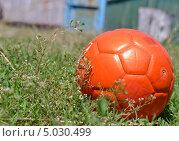 Футбольный мяч на траве (2013 год). Редакционное фото, фотограф Роман Коваленко / Фотобанк Лори