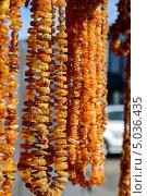 Купить «Янтарные бусы», фото № 5036435, снято 9 сентября 2013 г. (c) Сергей Куров / Фотобанк Лори