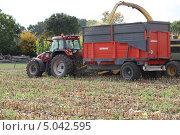 Купить «Трактор с прицепом на поле во время уборки урожая», фото № 5042595, снято 28 сентября 2010 г. (c) Phovoir Images / Фотобанк Лори