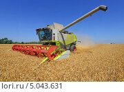 Купить «Уборка зерновых комбайном», фото № 5043631, снято 7 августа 2013 г. (c) Швадчак Василий / Фотобанк Лори