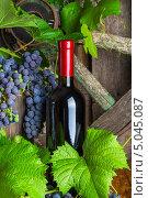 Бутылка красного вина на фоне винограда. Стоковое фото, фотограф Олег Жуков / Фотобанк Лори