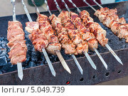 Купить «Аппетитный сочный шашлык жарится на мангале», фото № 5049739, снято 23 февраля 2019 г. (c) FotograFF / Фотобанк Лори