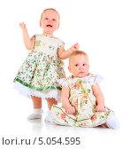 Купить «Две годовалые девочки в платьях», фото № 5054595, снято 26 октября 2012 г. (c) Андрей Армягов / Фотобанк Лори