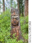 Купить «Алтайский идол», эксклюзивное фото № 5057943, снято 14 августа 2013 г. (c) Gagara / Фотобанк Лори