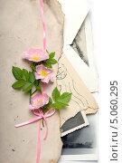 Цветки шиповника на старых письмах. Стоковое фото, фотограф Наталья Алексахина / Фотобанк Лори