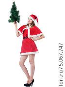 Купить «Девушка в наряде Санты с елкой», фото № 5067747, снято 24 августа 2013 г. (c) Elnur / Фотобанк Лори
