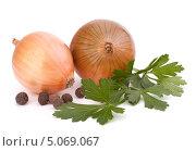 Купить «Две луковицы, петрушка и специи на белом фоне», фото № 5069067, снято 17 октября 2011 г. (c) Natalja Stotika / Фотобанк Лори